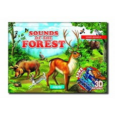 Sounds of the forest sounds around us