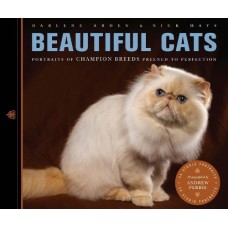 Beautiful Cats: Portraits of Champion Breeds Preened to Perfection